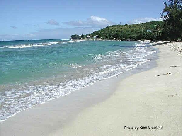 Cane Island Rentals
